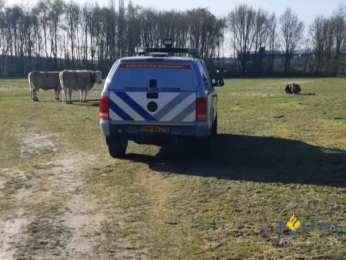 De man met metaaldetector vond het explosief in een weiland in Den Bosch.