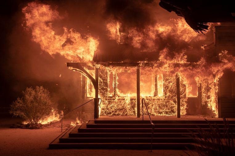 Natuurbranden in Californië bedreigen nu ook rijke en beroemde inwoners van Los Angeles. Duizenden woningen in luxueuze wijken als Pacific Palisades en Brentwood dreigen ten prooi te vallen aan het vuur.
