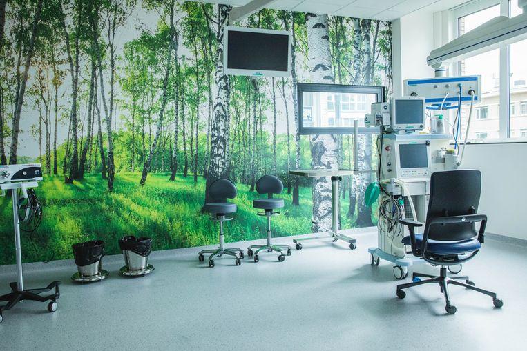 De print met berkenbomen zorgt mee voor rust in de nieuwe behandelzaal.
