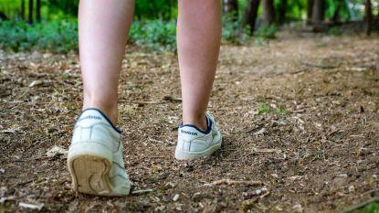 Provinciale subsidie voor heropening voetwegen Kleine Steylen