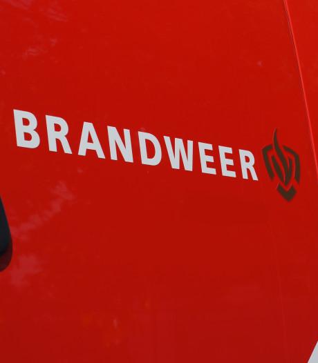 Vee omgekomen bij boerderijbrand Friesland