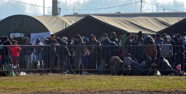 Vluchtelingen in Kroatië, op weg naar Duitsland. Beeld AFP