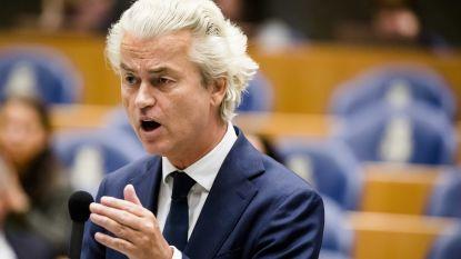"""Geert Wilders feliciteert """"helden van Vlaams Belang"""""""