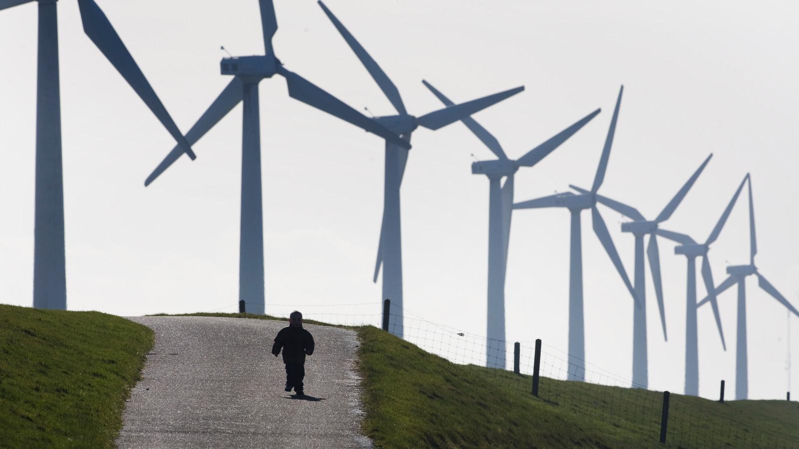 Het windpark bij Urk.