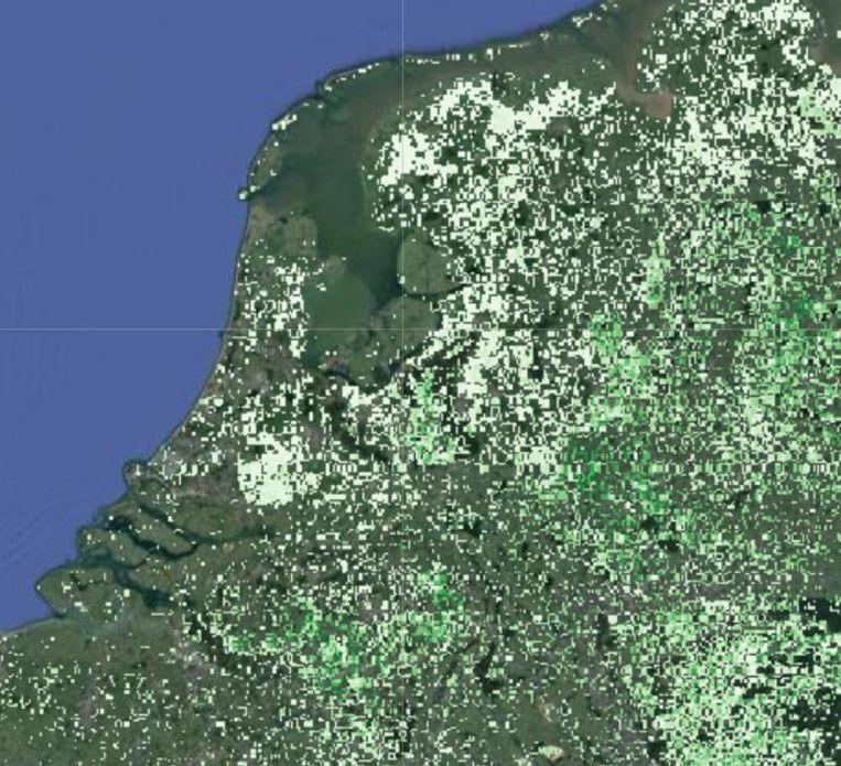 De Nederlandse situatie. De stipjes zijn plekken die in theorie geschikt zijn voor boomgroei; hoe donkerder, hoe meer bomen er nog bij kunnen. Witte vakjes zijn vaak al deels bebost (zie bijvoorbeeld het Groene Hart en de Veluwe). Ietwat verwarrend is de egale mosgroene achtergrondkleur: grote gebieden zijn afgevallen in het onderzoek omdat ze al in gebruik zijn. Uitbreiding zou blijkens de kaart mogelijk zijn rond de Belgisch-Nederlandse grens, in Noord-Limburg en in de Achterhoek. Beeld Crowther Lab