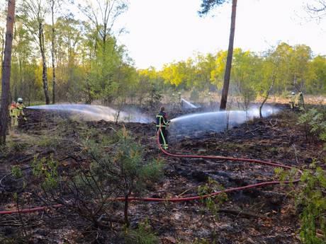 Politie onderzoekt 5 mogelijke brandstichtingen in natuurgebied NO-Twente