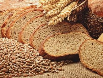 Hét brood van de Kijk-Uit is terug: Kristof Begyn haalt zijn bakkunsten weer boven