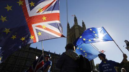 """""""EU wil douanegrens in de Ierse Zee"""""""