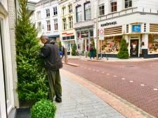 Straatbeeld: Ook de Vughterstraat heeft nu zestig kerstbomen