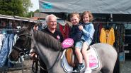 Partij 'Pro' hoopt over de kiesdrempel te springen  met 26-jarige pony 'Rosita'