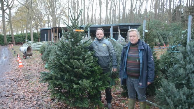 """Vroege stormloop op kerstbomen: """"Door corona willen mensen meer sfeer in huis brengen"""""""
