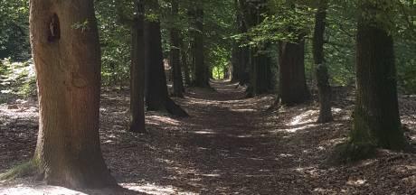 Wandelpaden afgesloten op Springendal in Ootmarsum