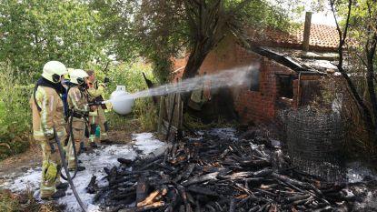 Gastank gevrijwaard bij zware tuinbrand