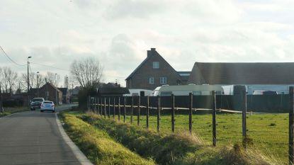 Politie viseert woonwagenparken in Vilvoorde en Meise in grootscheeps onderzoek naar fraude met tweedehandswagens