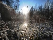 Kou op komst in Twente: het kan vannacht gaan vriezen