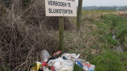 Stadsbestuur van Oudenaarde onderzoekt hoe het camera's kan inzetten om sluikstorters te betrappen