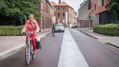 Sp.a en de Vernieuwers wil meer sensibilisering rond fietsstraat