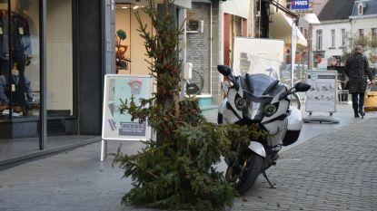 Kerstbomen brengen kerstsfeer in stadscentrum, enkele vreemde exemplaren worden vervangen