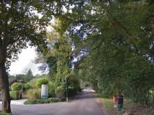 Gewonde bij steekincident op camping in Hollandsche Rading; politie houdt verdachte aan