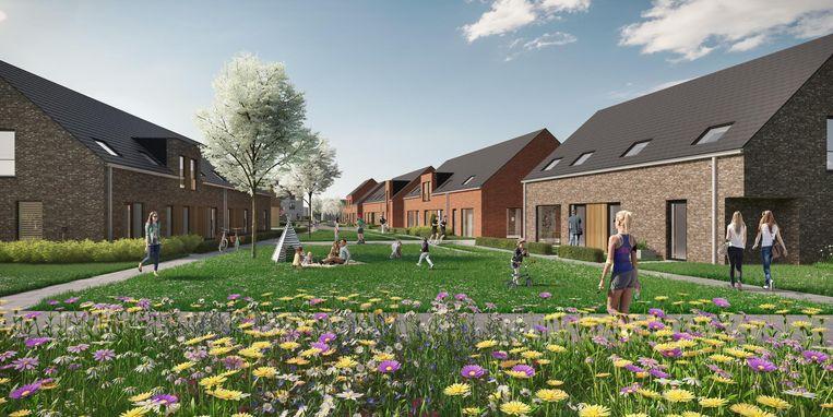 Een toekomstbeeld van een deeltuin achter de huizen.