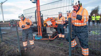 Deens grenshek tegen wilde zwijnen is klaar