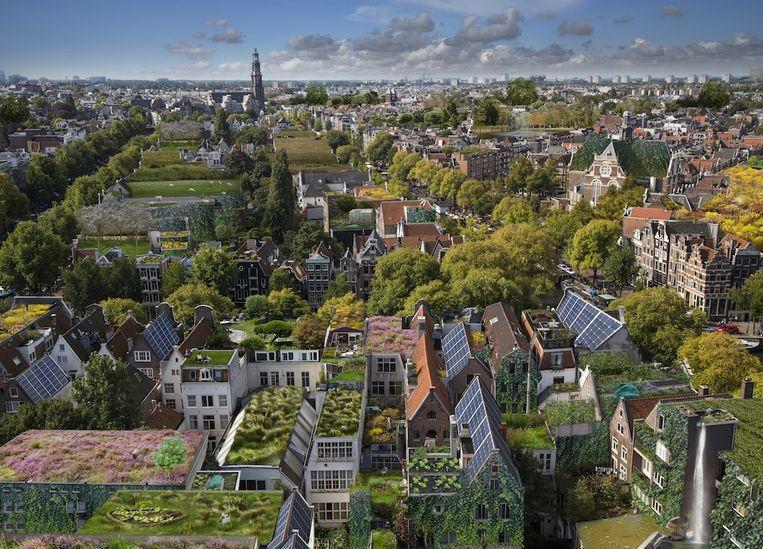 Zo zou de stad eruit kunnen zien met meer zonnepanelen en meer groen Beeld Rooftop Revolution