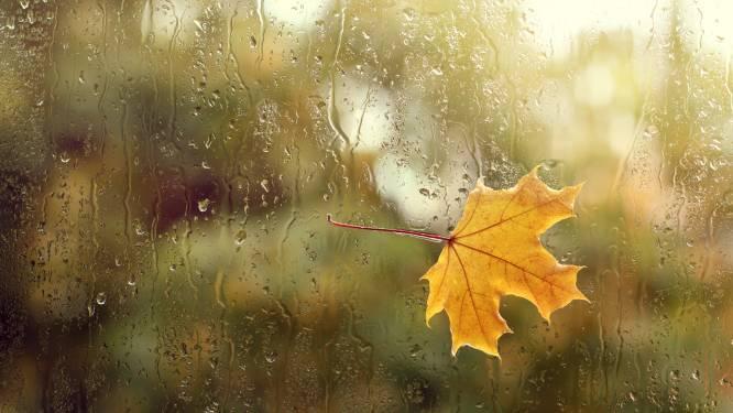 Een echte herfstdag met regen en veel wind