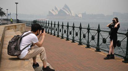 Sydney gehuld in dikke rook door tientallen bosbranden in New South Wales
