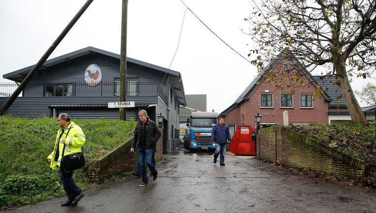 Het pluimveebedrijf in Hekendorp waar 150 duizend kippen werden geruimd. Beeld anp