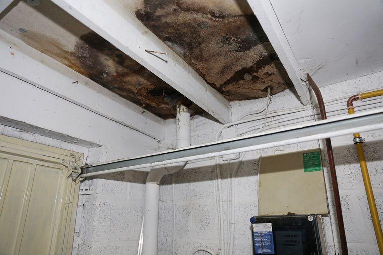 Het plafond boven de elektriciteitskast staat bol van het vocht en de schimmel.