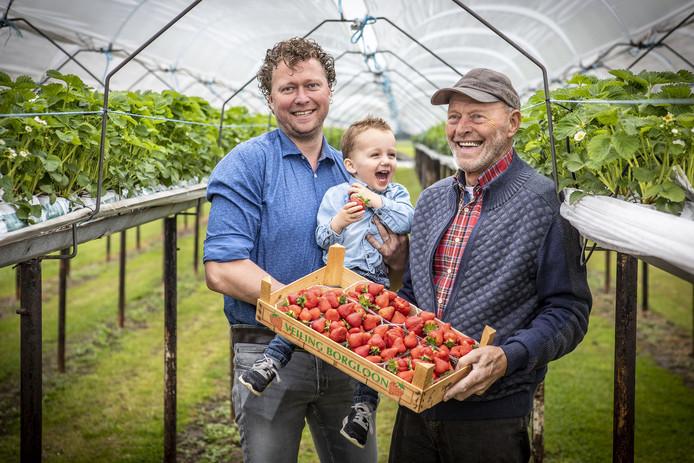 Drie generaties op De Manderveense Aardbei, vlnr Hardrik Hindriksen met zijn zoon Joe en zijn vader Johan.