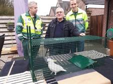 'Terrorkaketoe' in Nijkerk gevangen