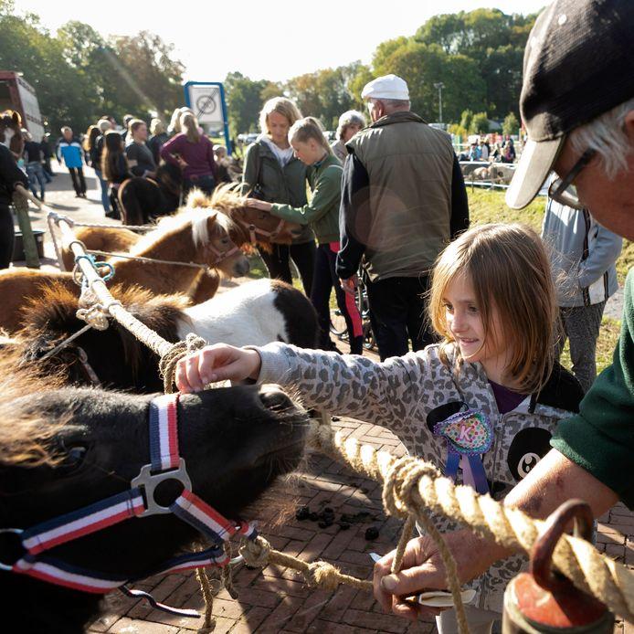 Zo gaat de Ponymarkt Brakel er dit jaar niet uitzien.