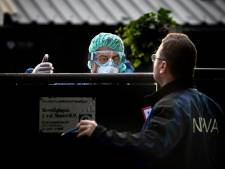 Duizenden nertsen vergast bij eerste ruiming in Deurne: 'Een spandoek verandert hier niks meer aan'