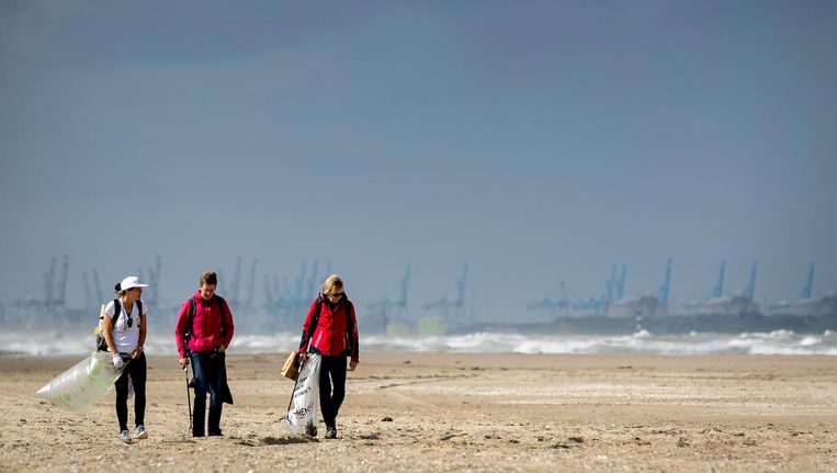 Vrijwilligers maken met Stichting De Noordzee de Nederlandse Noordzeekust schoon. Beeld anp