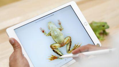 Stelt Apple morgen in Brooklyn iPad Pro met historische USB-C-poort voor?