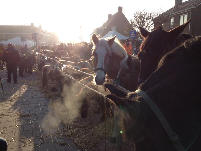 De paardenmarkt in 2015.