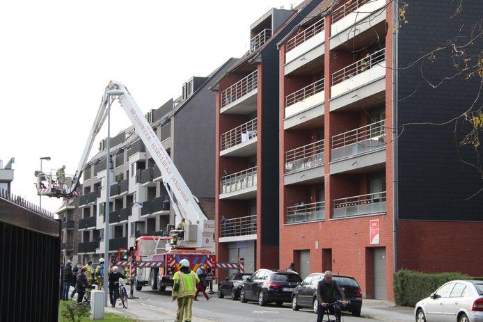 De brand ontstond op de derde verdieping van een appartementsgebouw in Harelbeke.