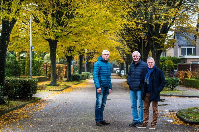 """Jan Hiemstra, Jan van Dijk en Jos Neijens (vlnr) voeren actie tegen het kappen van de haagbeuken in de Jasmijnstraat. """"Dit is misschien wel de mooiste straat van Borne."""""""