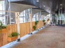 'Groene' bouwhekken verzachten grijze steigers bij stadhuis Zwolle