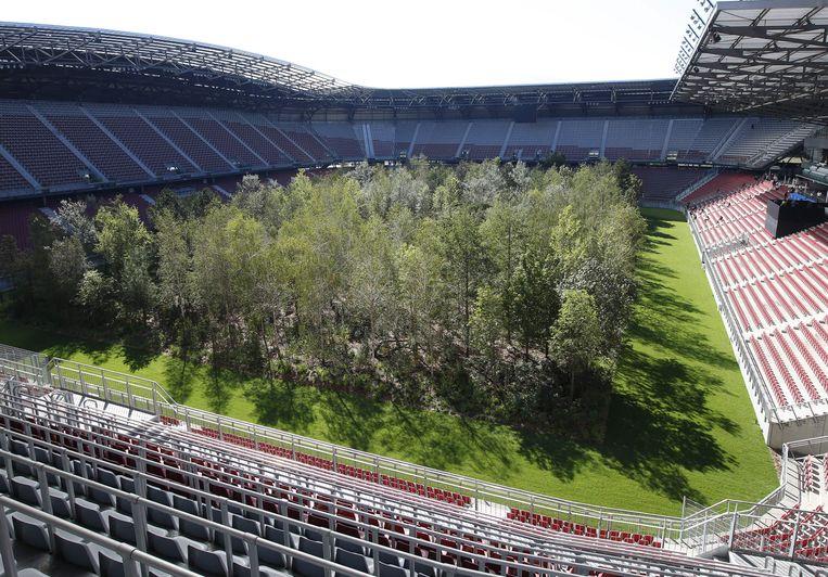 In het voetbalstadion van het Oostenrijkse Klagenfurt ligt tot eind oktober geen gladde grasmat, maar staat een weelderig, Midden-Europees bos.  De Zwitserse kunstenaar Klaus Littmann plantte voor zijn project 'For Forest - The Unending Attraction of Nature' zo'n 300 bomen tussen de tribunes.  Beeld AFP