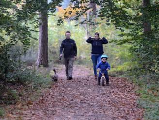 Veilig eropuit met je gezin tijdens de lockdown? Het kan nog! Dit zijn de leukste uitstappen tijdens de herfst