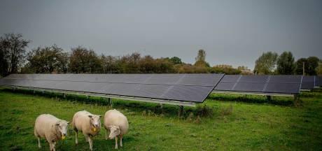 Enexis over zonne-energie: stroomnet in Brabant nu nog toereikend