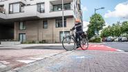 Geen applaus van Fietsersbond voor fietspad in vernieuwde Adriaen Brouwerstraat