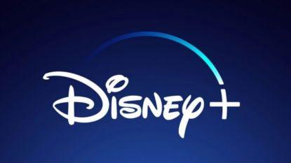 """Jammer maar helaas, Disney+ zal in tegenstelling tot Netflix niét gedeeld kunnen worden met vrienden: """"Dat is piraterij"""""""