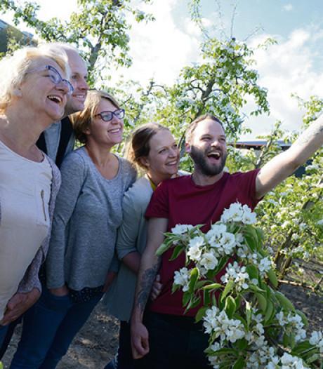'Onze fruitbomen zijn flink in de watten gelegd'