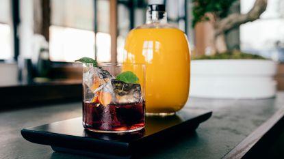 5 zomercocktails om te drinken tijdens je volgende BBQ!