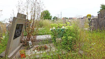 Oude begraafplaats wordt groene oase met kunstwerk