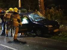 Auto ramt boom in Wageningen, bestuurder gewond