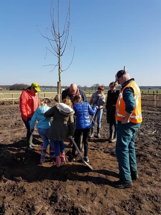 Hoogstamrfruitbomen planten in Ven-Zelderheide.